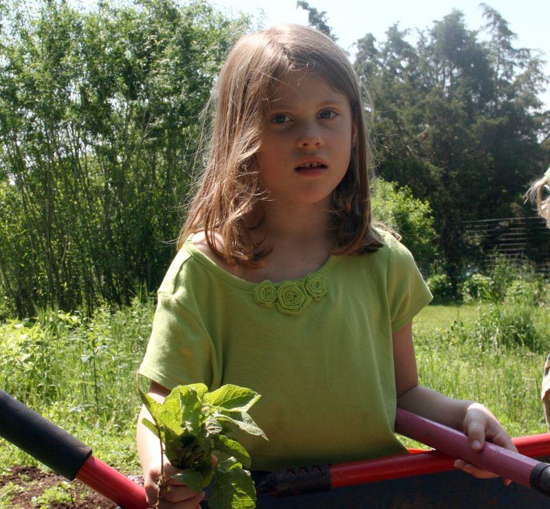 GardeningMay2011 006
