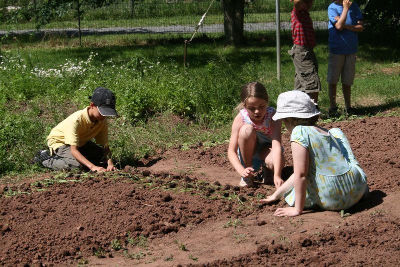 GardeningMay2011 011