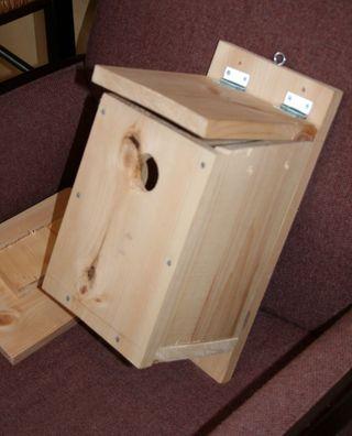 Birdhouse6